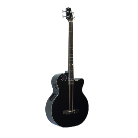Acoustic Bass EBR1-B4