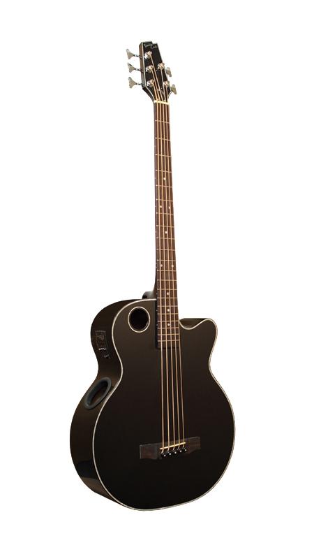 Acoustic Bass EBR1-B5