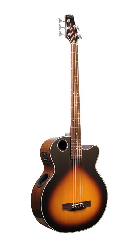 Acoustic Bass EBR1-TB5