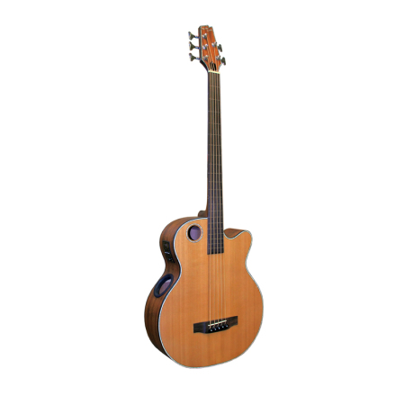 Acoustic Bass EBR3-N5F