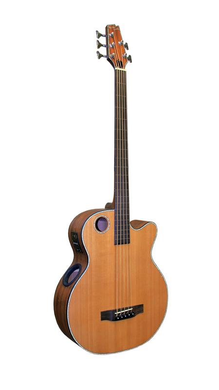 Acoustic Bass EBR3-N5F