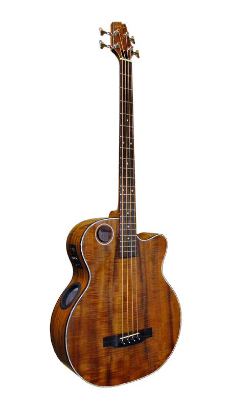 Acoustic Bass EBR6-N4