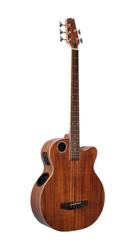 Acoustic Bass EBR6-N5