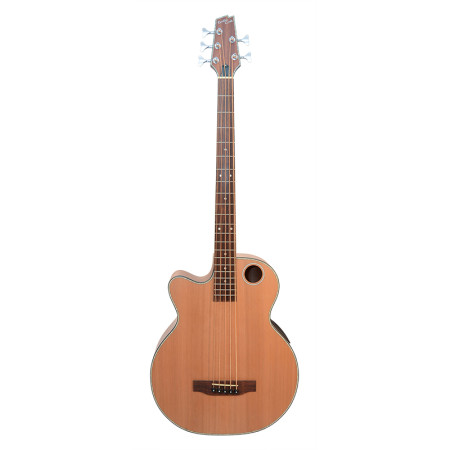 EBR3-N5L 5-String Acoustic Bass