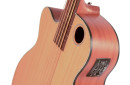 EBR3-N5LHF Acoustic Electric Bass three quarter view