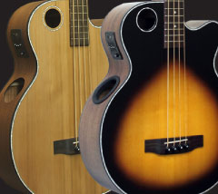Acoustic Electric Basses